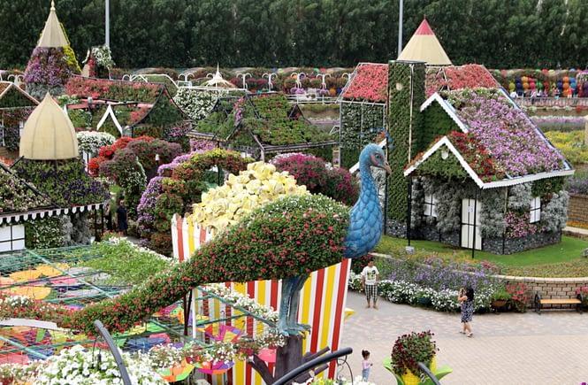Dubaj, Dubai Miracle Garden