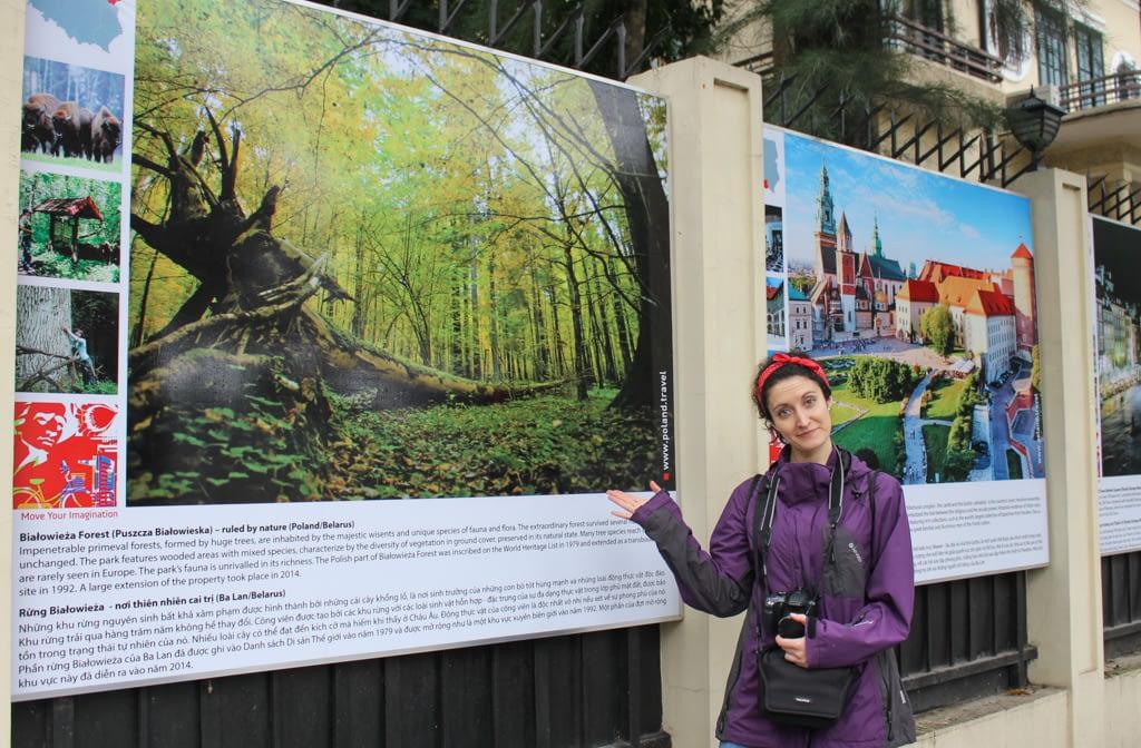 Polska Ambasada w Wietnamie i promowane atrakcje, m.in. Puszcza Białowieska. Stolica Wietnamu, Hanoi, marzec 2019 r.