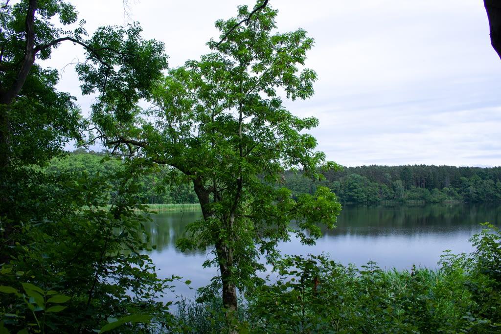 Jezioro Lutomskie