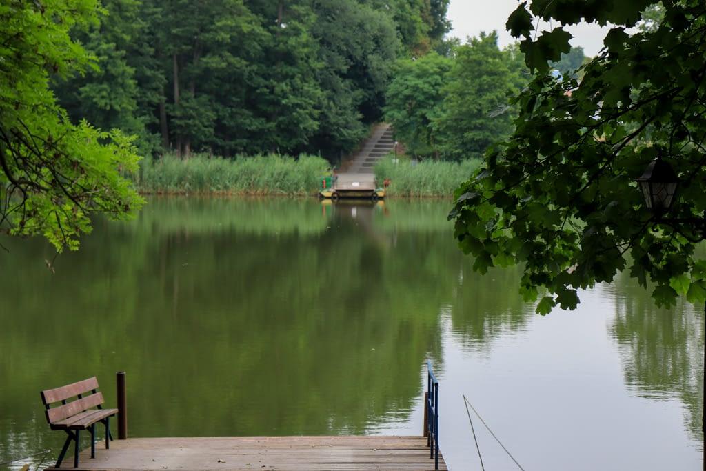 Jezioro w Zaniemyślu