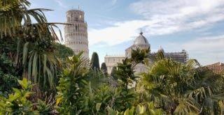 wieża w tropikach - Piza
